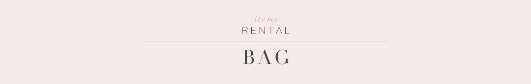 バッグ|結婚式やパーティーのためのレンタルドレス|HAUTE rent to runway
